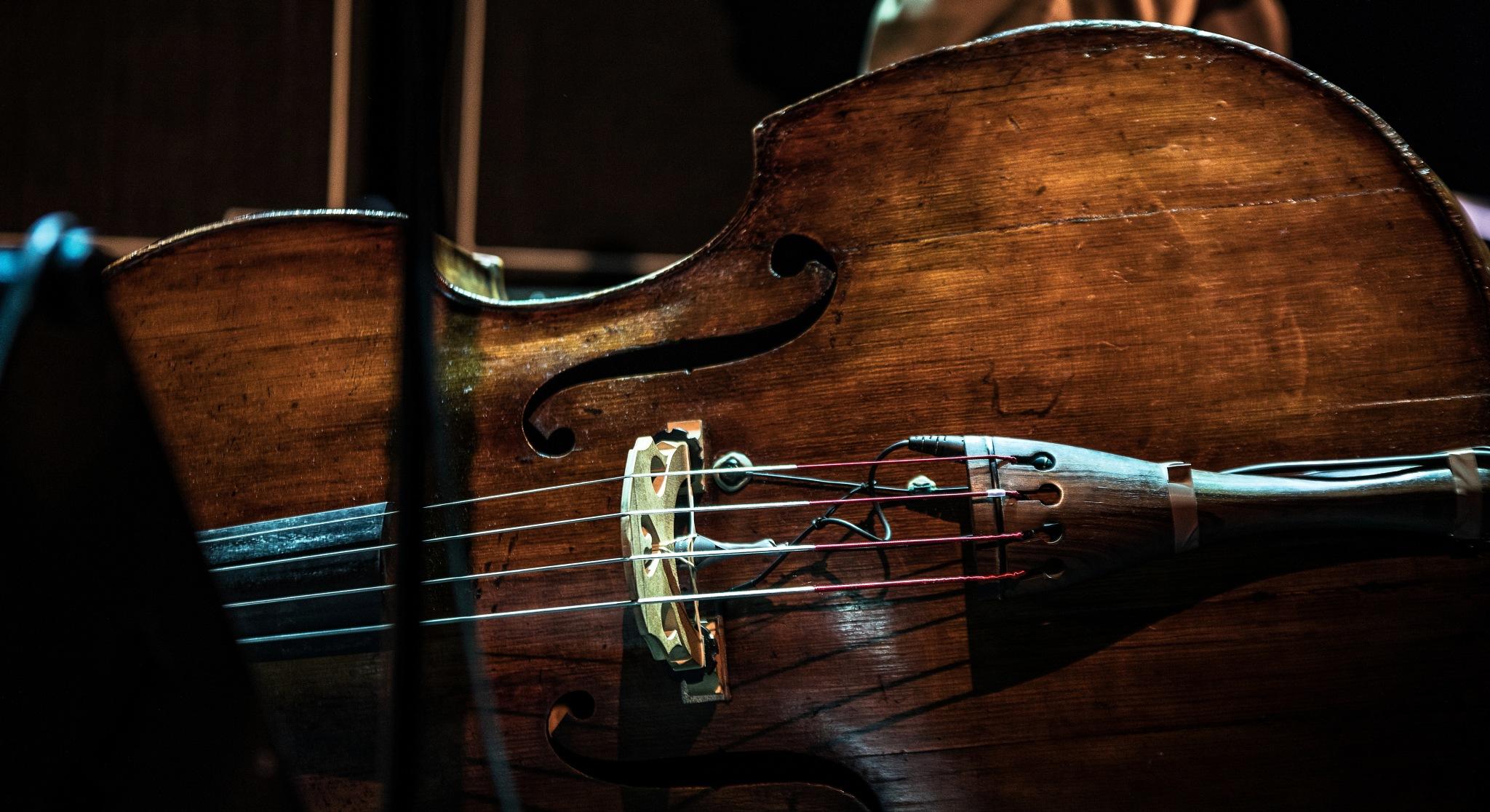 Jazz on A Contrabass. by GiekeMerckx