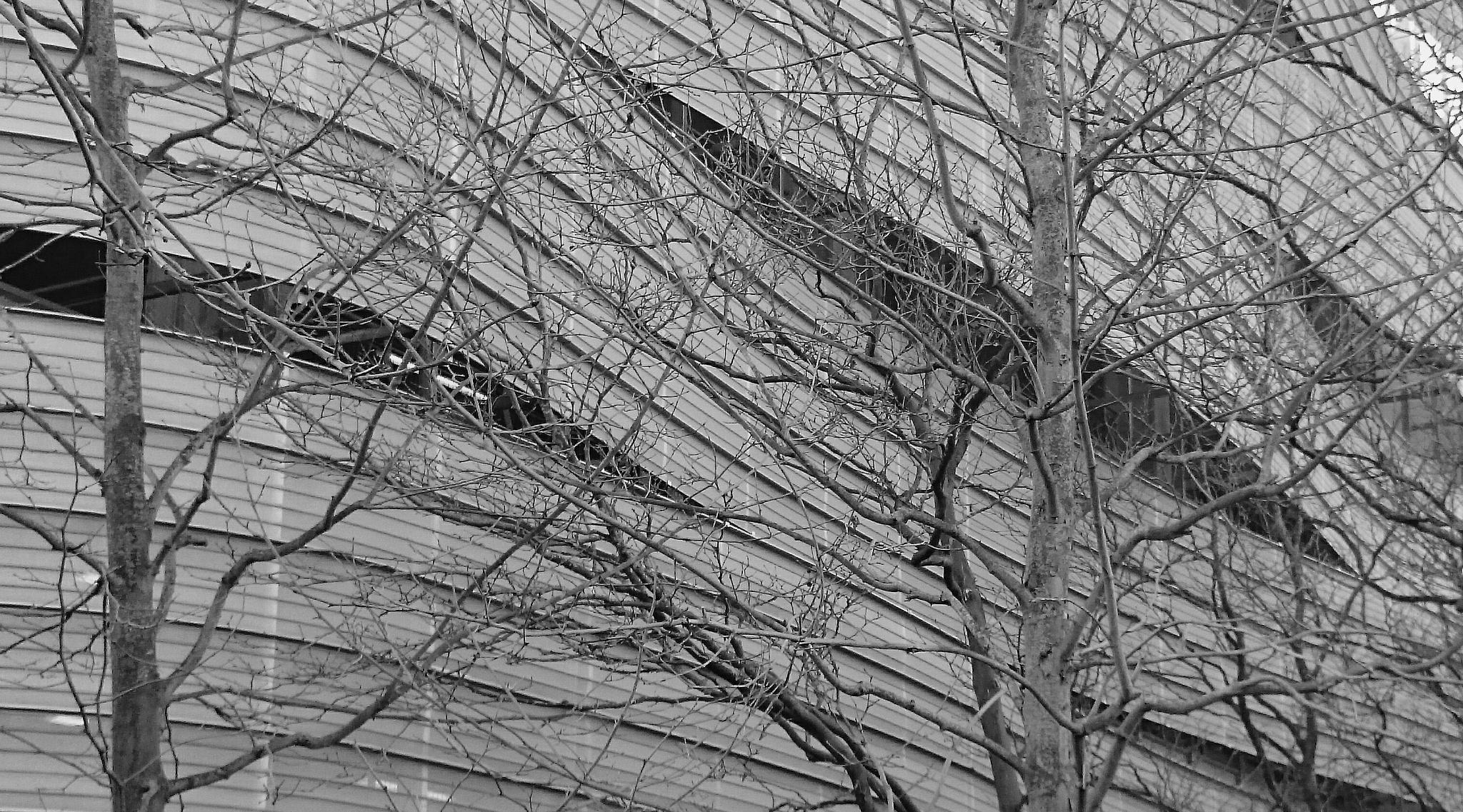 Multi storey by Jon Brooke-Langham