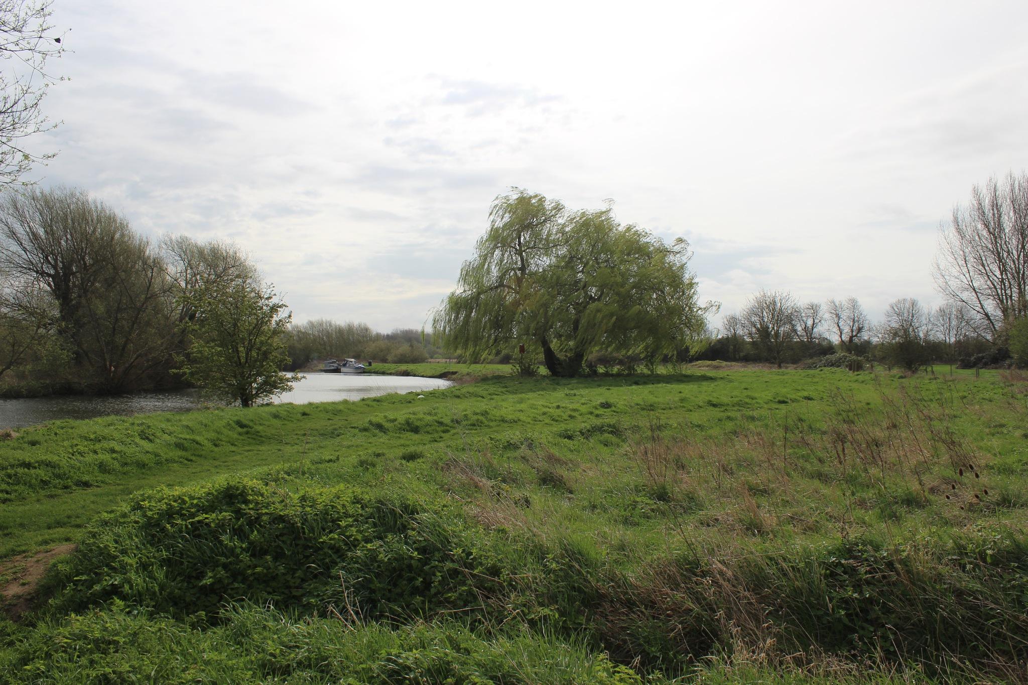 Riverside Contrast (1) by Jon Brooke-Langham