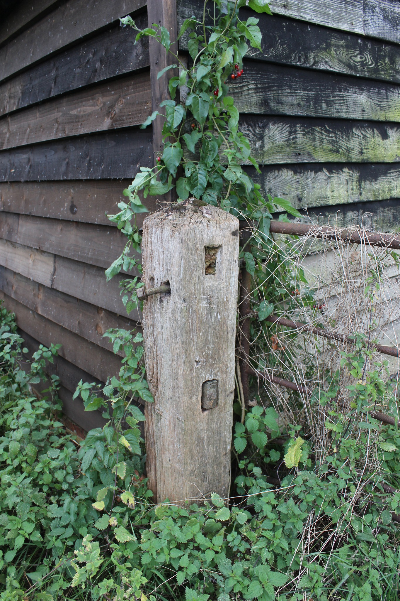 Shack and Gate Post by Jon Brooke-Langham