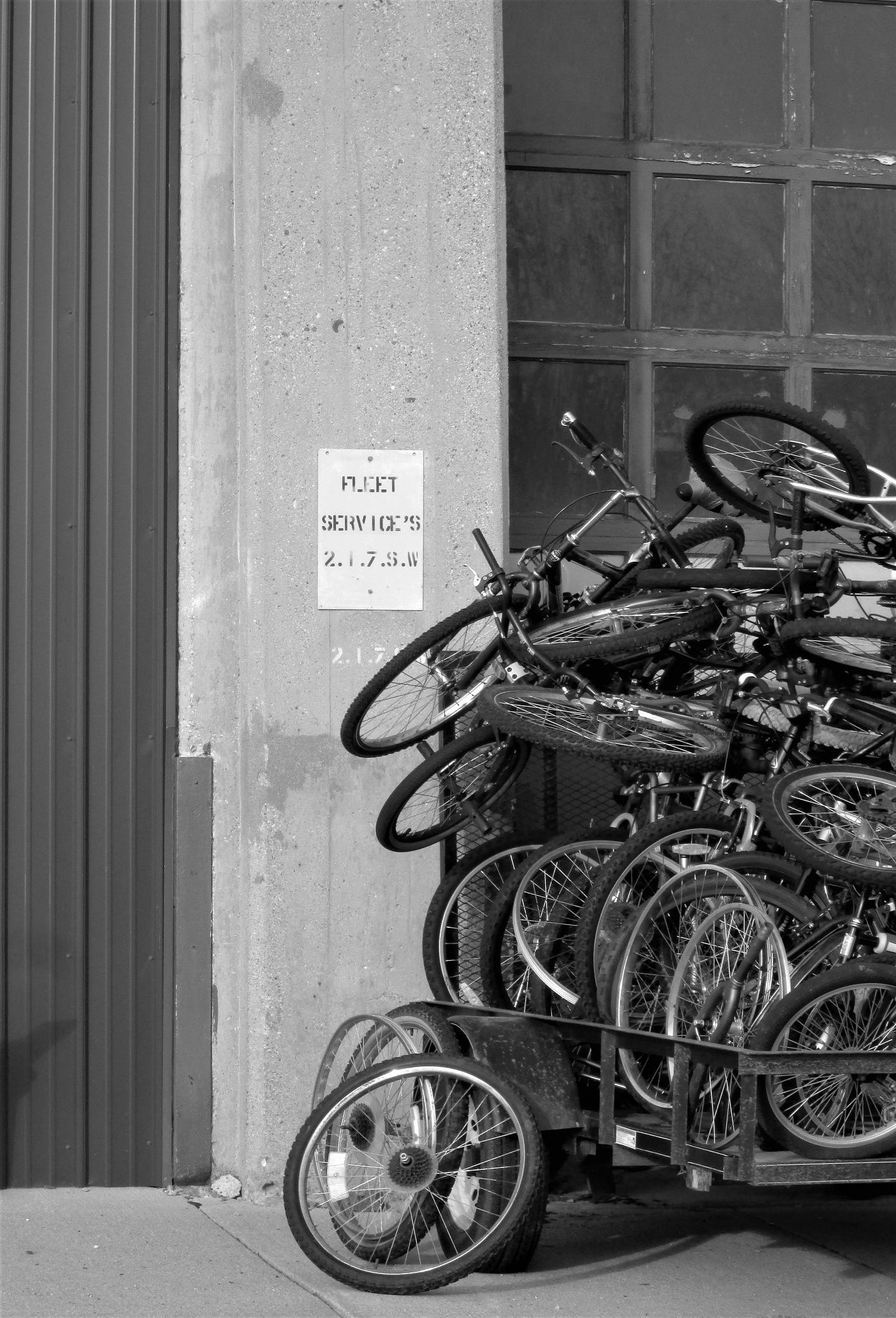 Bike Shop by Zebb