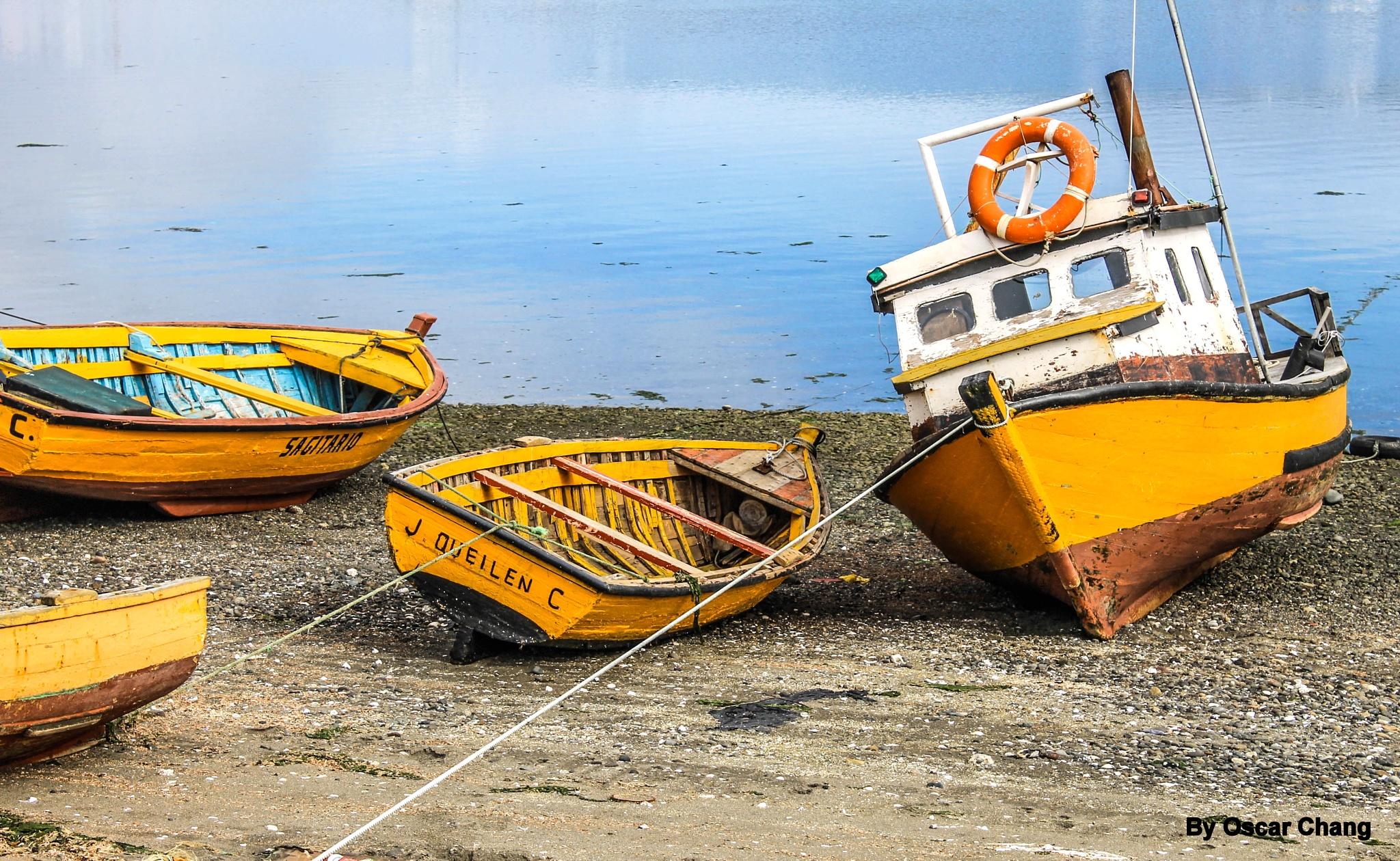Cuatro botes by Oscar Chang