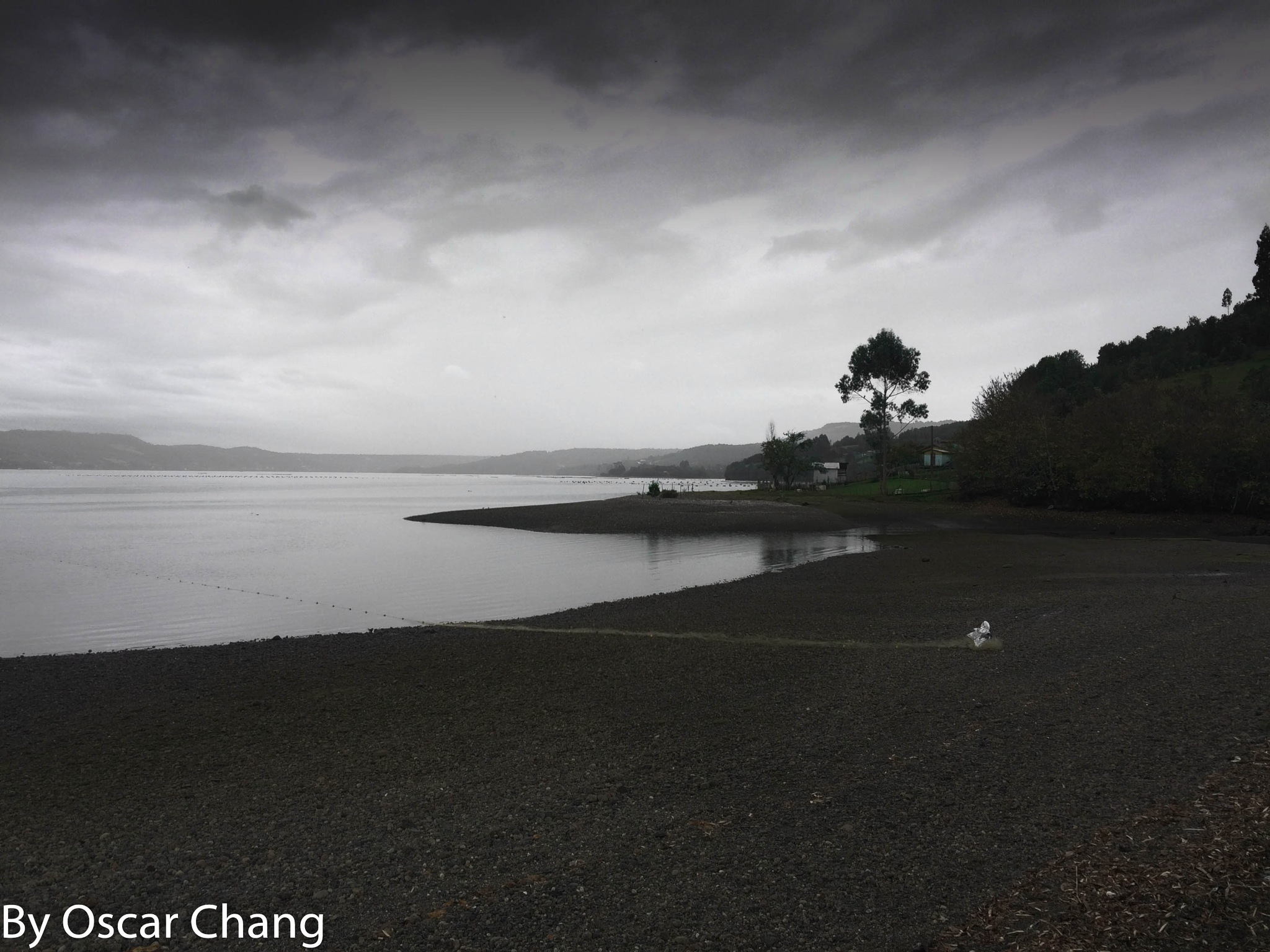 Aulen by Oscar Chang