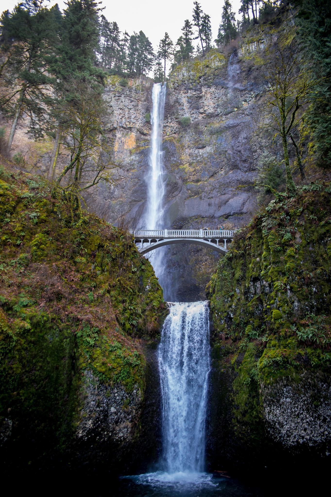 Multnomah Falls by cyourworldmyeyes