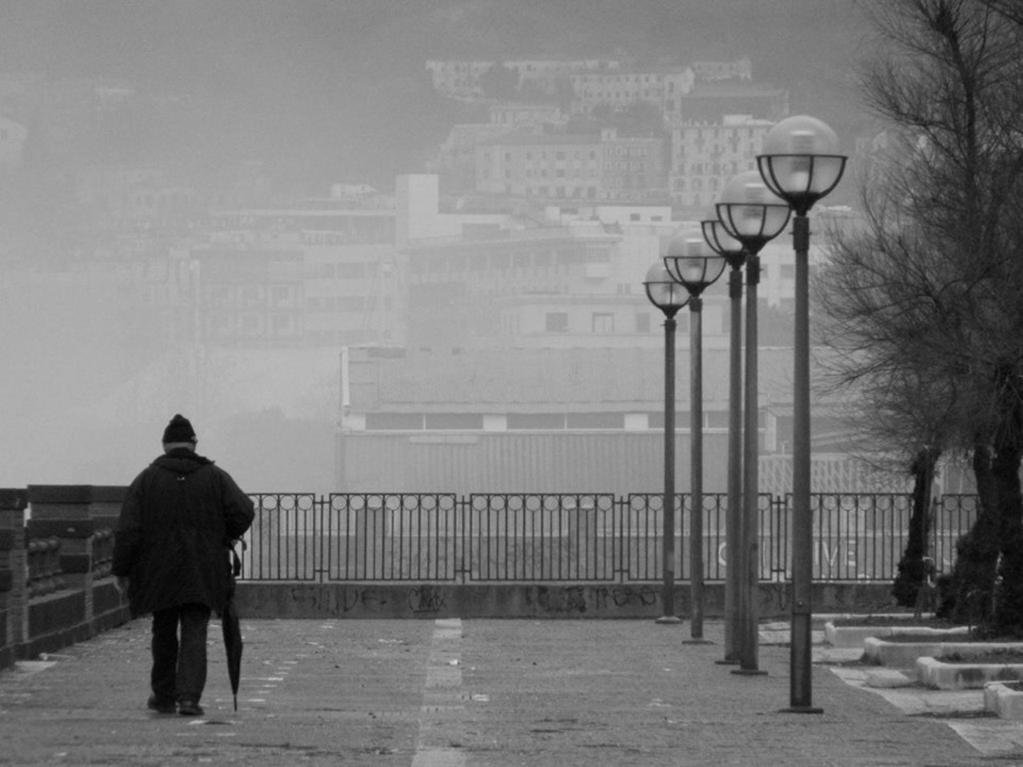 21 January 2014 by Margarita Gjeta