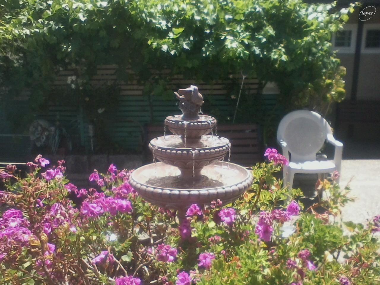 A fountain near a senior home 1 by Francisco Lopez