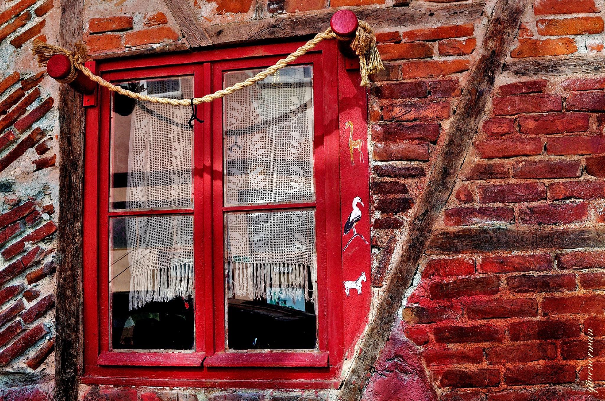 window by Güven Orman