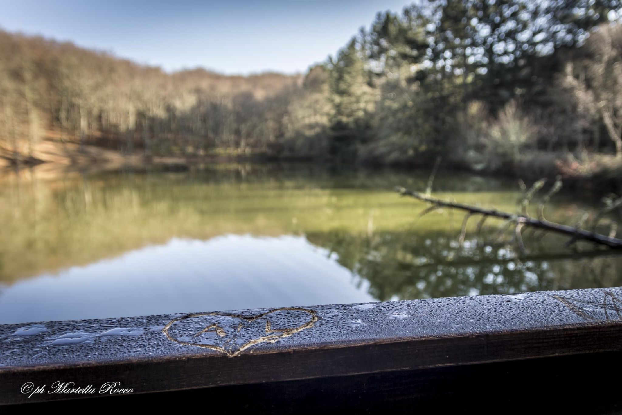 Artificial lake by PhotoM.R.60D