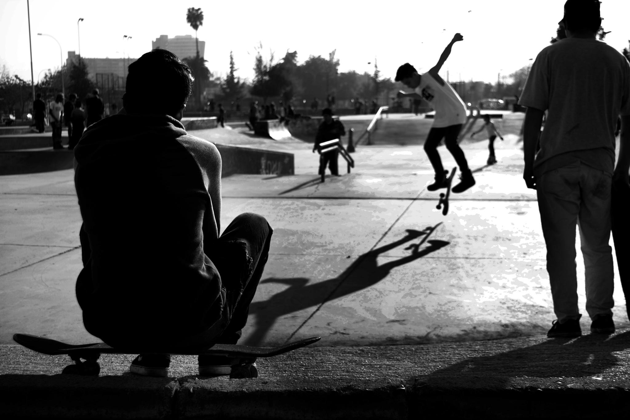 Skaters by Paula Navarro