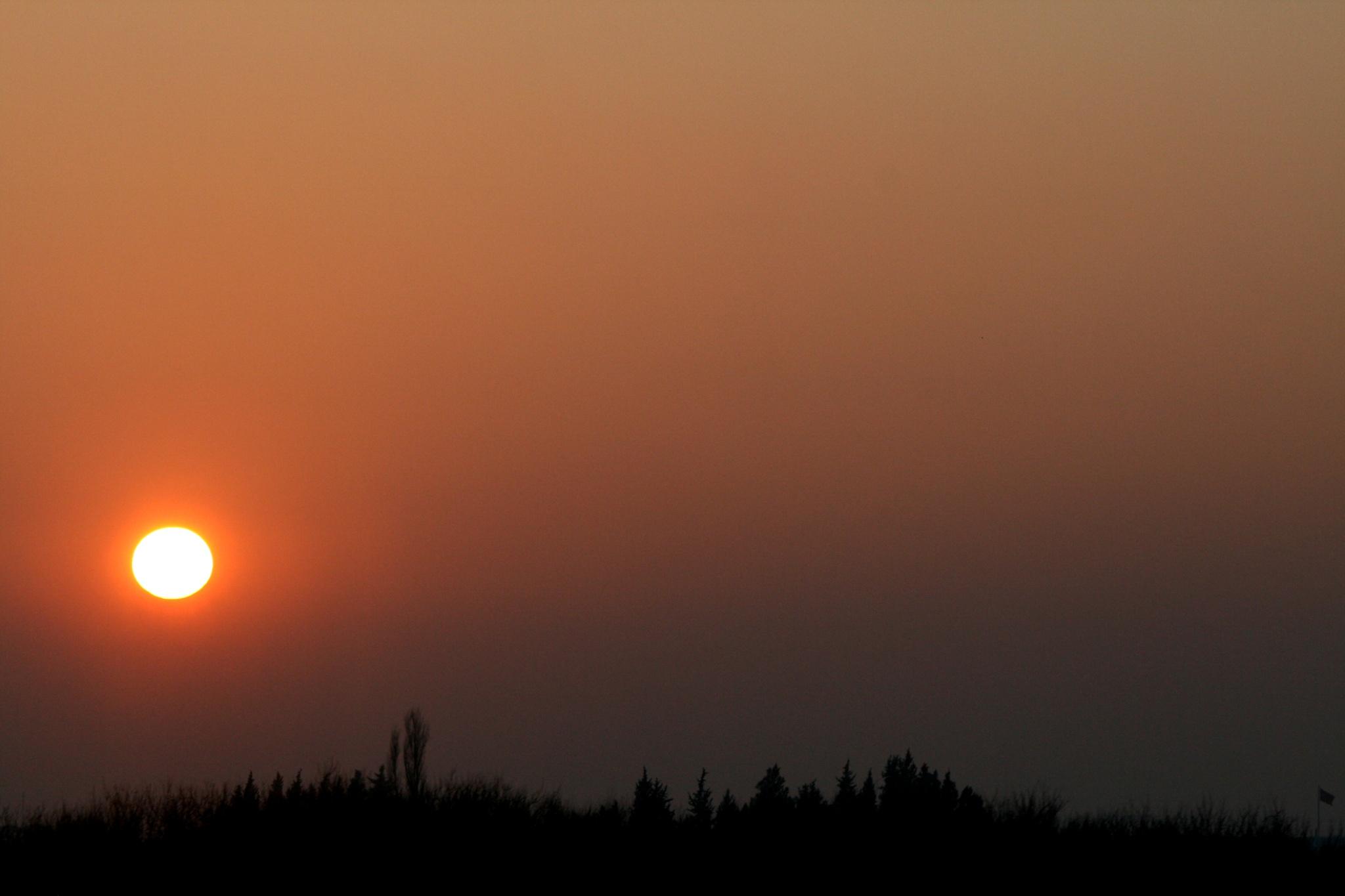 Photo in Landscape #sundown #sunset #sun #peace #nature