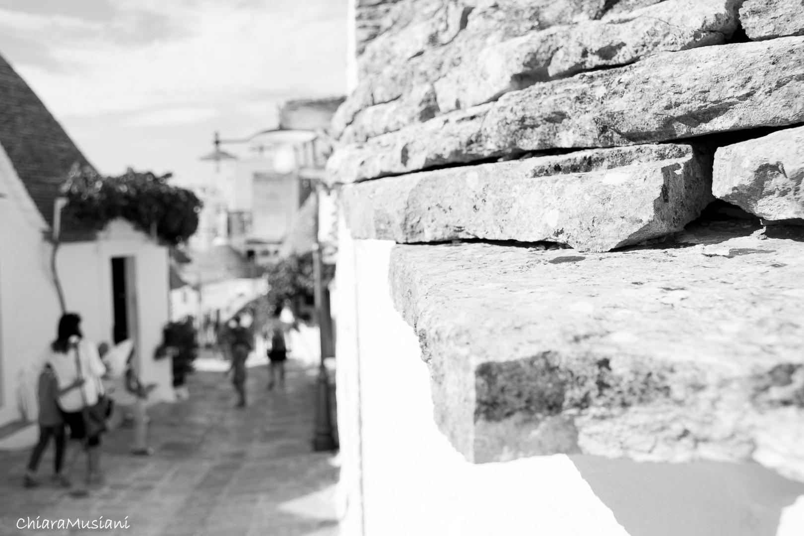 Hiding in the white  by musianichiara
