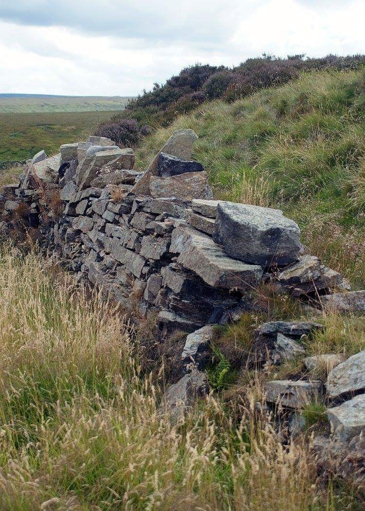 Drystone Wall by Ginnistam Photographic (Peter & Margaret Hardy)