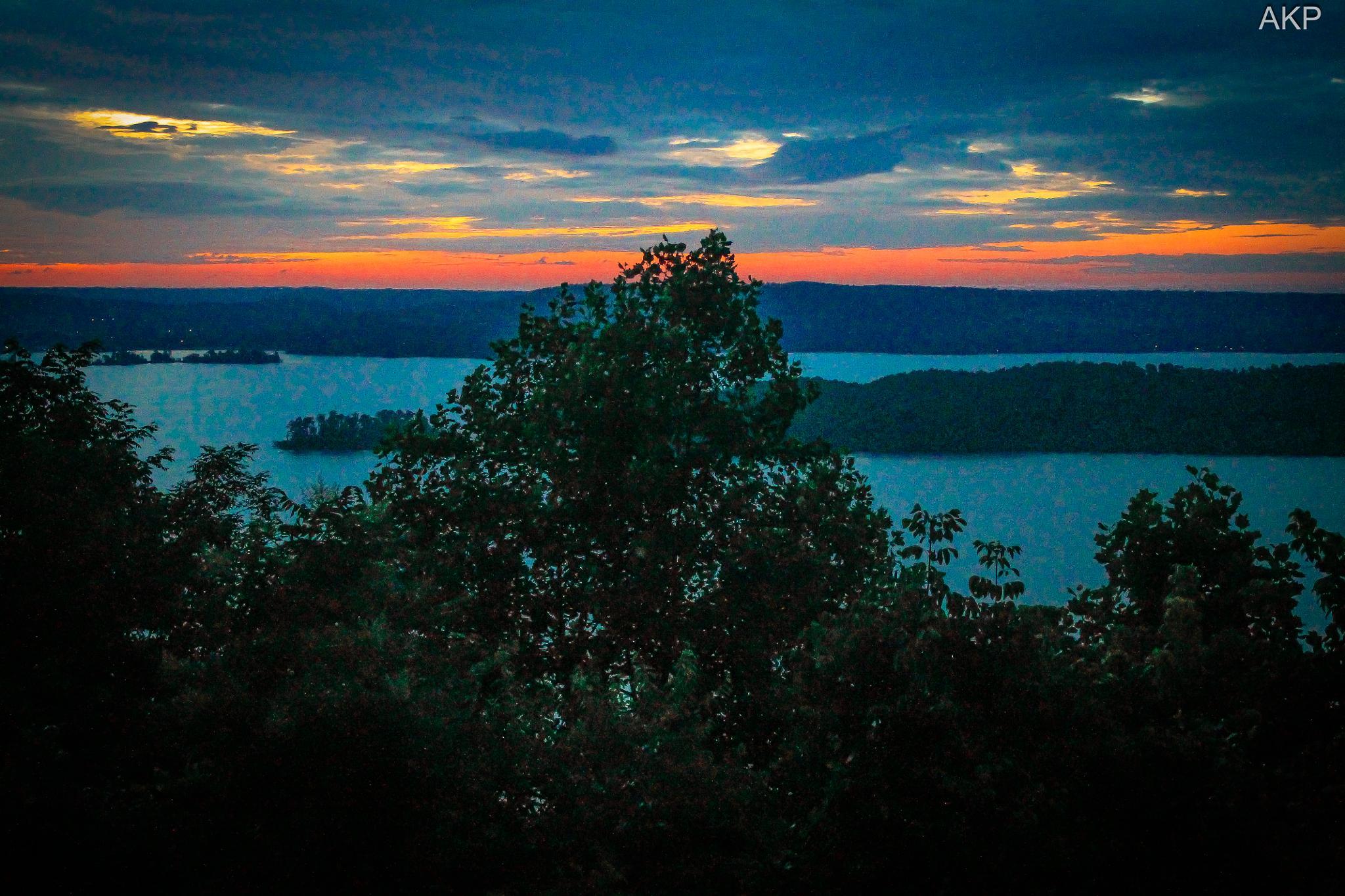 Lake Guntersville AL State Park by Art King