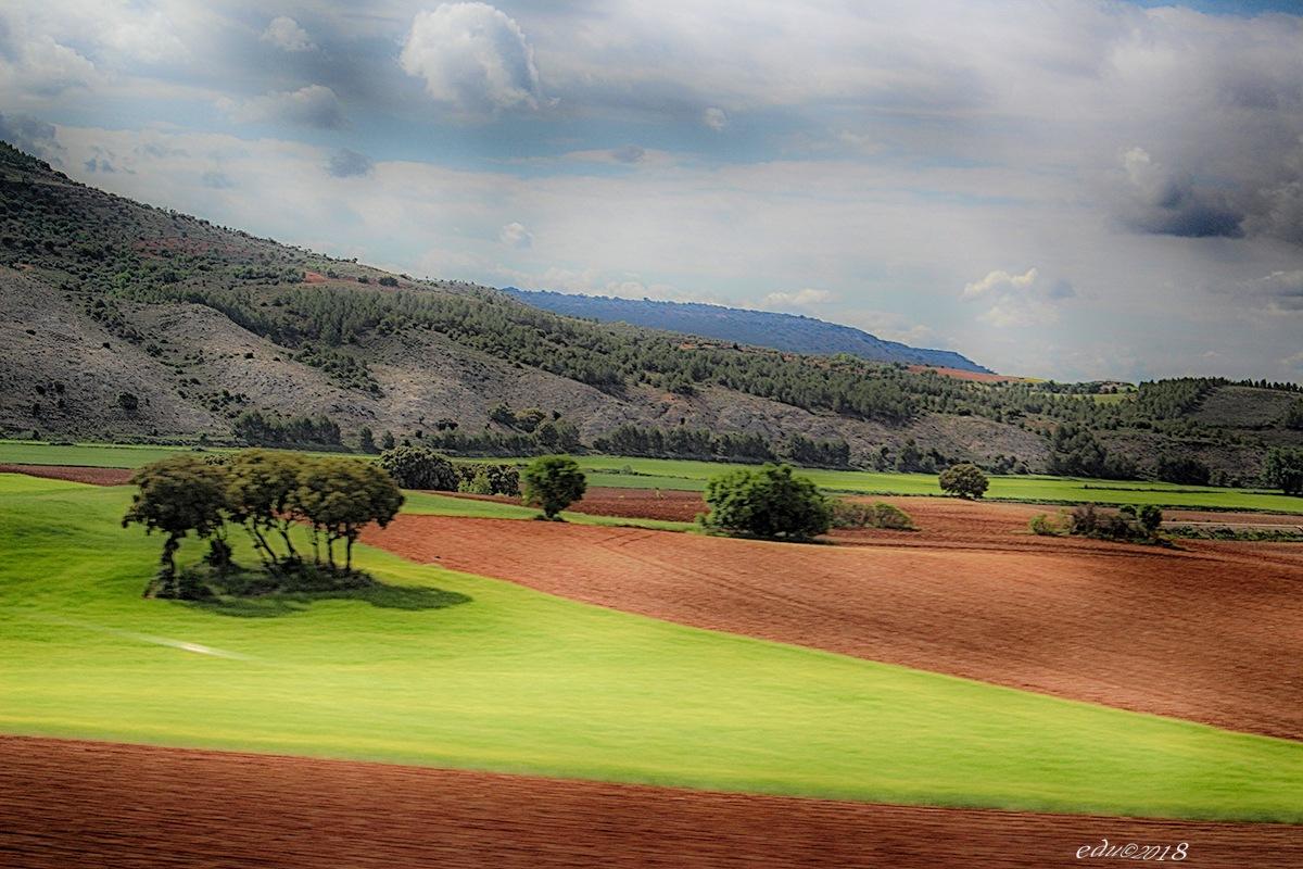 La agricultura es la madre fecunda que proporciona todas las materias primeras que dan movimiento a  by vallesedu