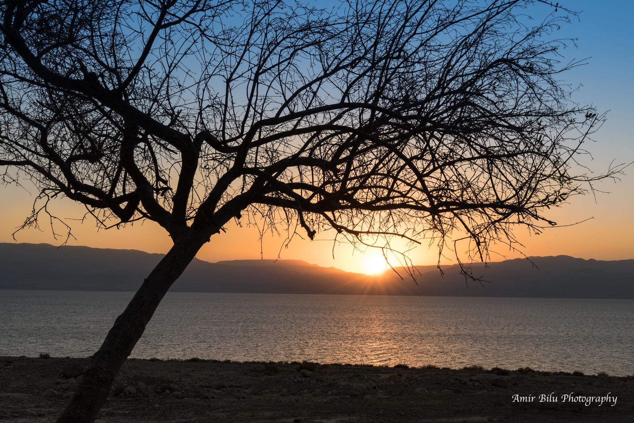 Sunrise at the Dead Sea by Amir Bilu