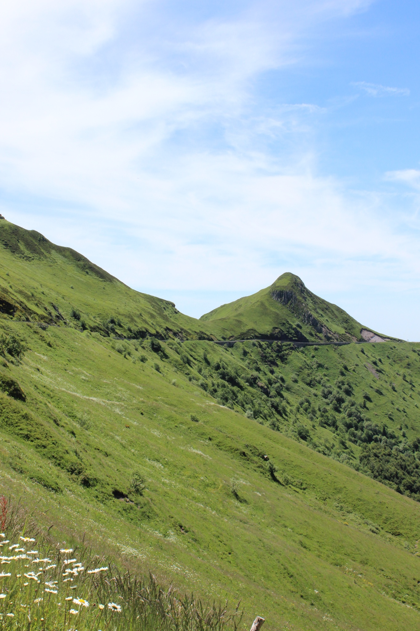 Cantal by Rose