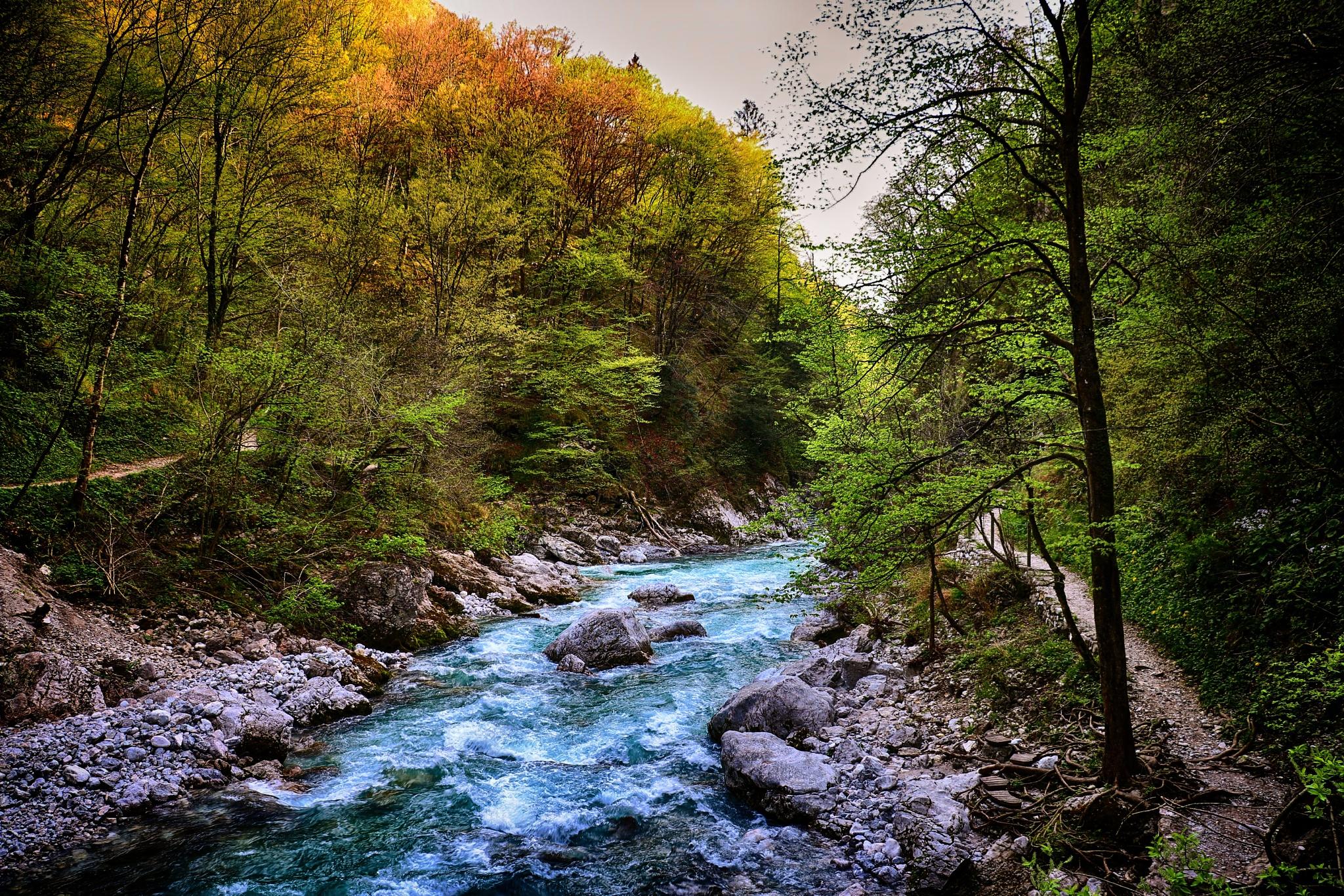 Tolminka River by Jan Skočaj