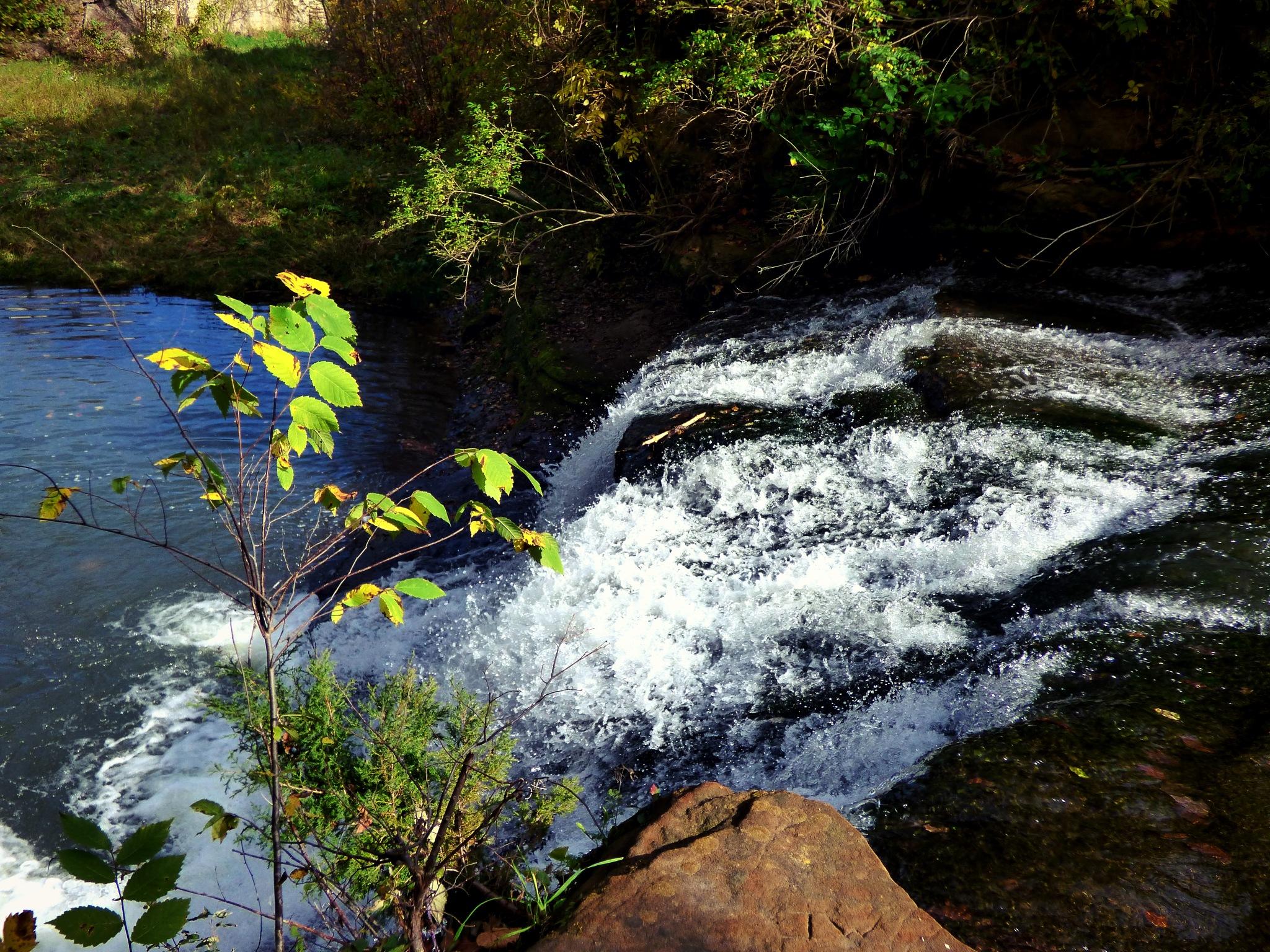 Mini Rapids by smjacob