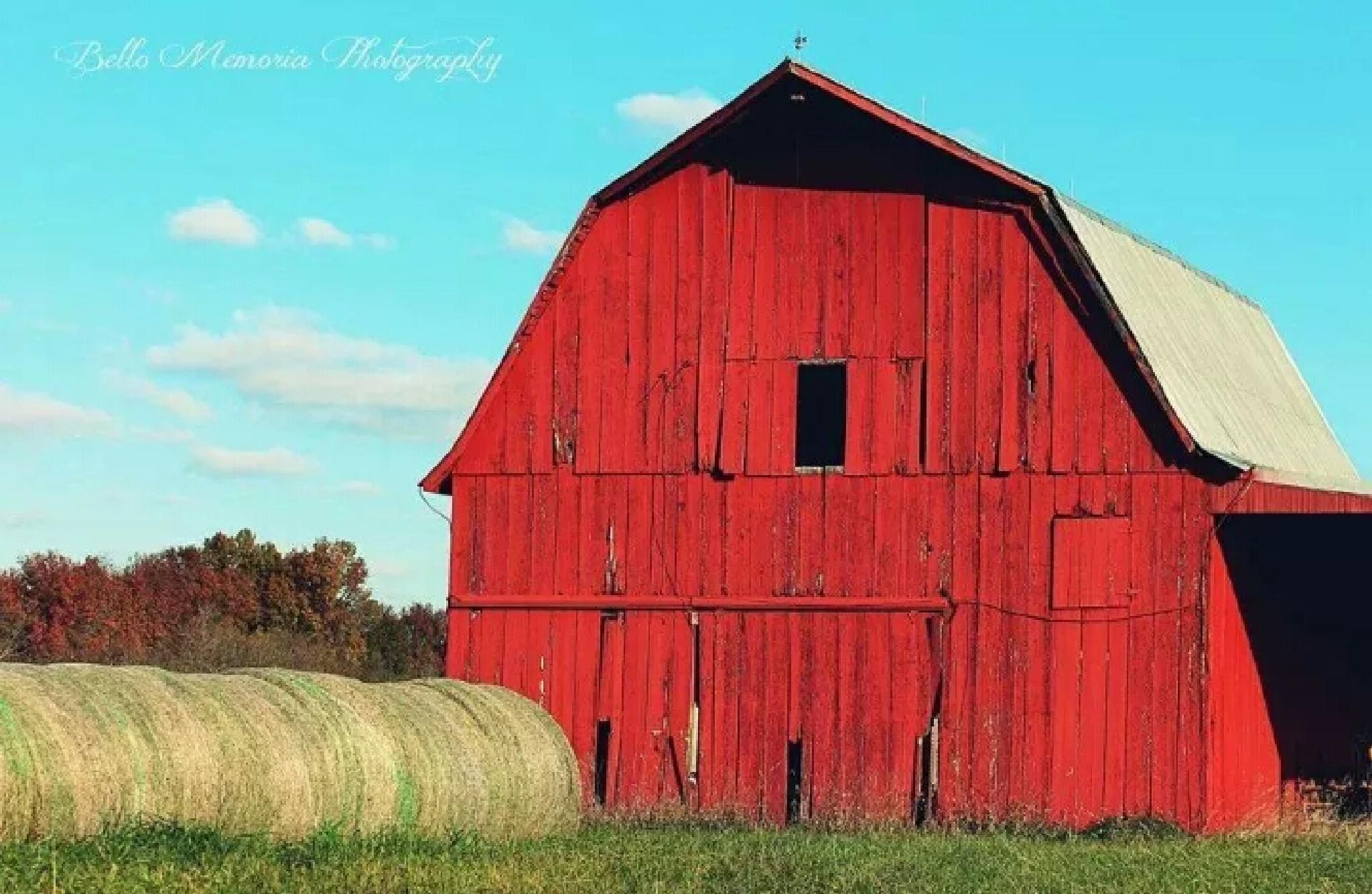 Ruby Red by hardagelh