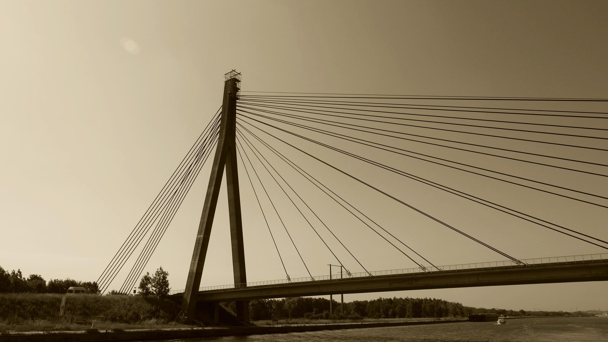 bridge by Colette Dumont