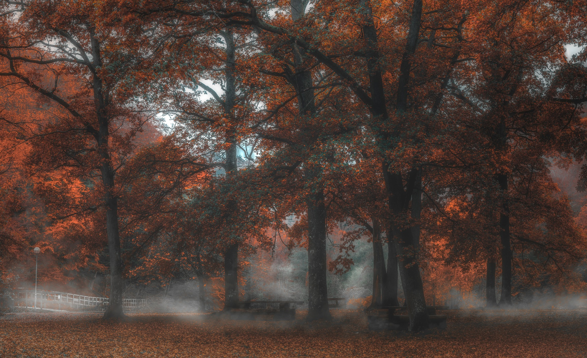 Autumn atmosphere by Göran Ebenhart