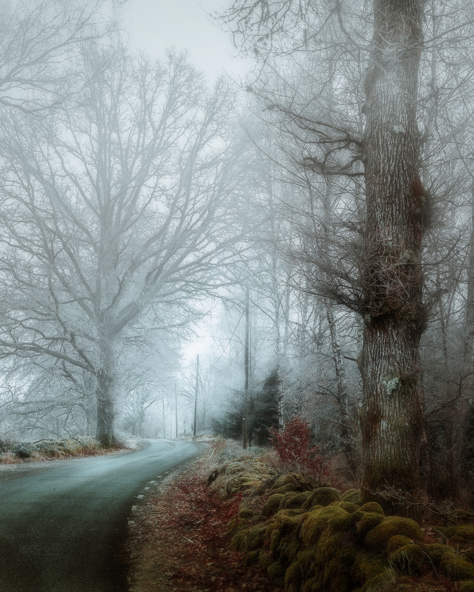 Road to Vesljunga by Göran Ebenhart