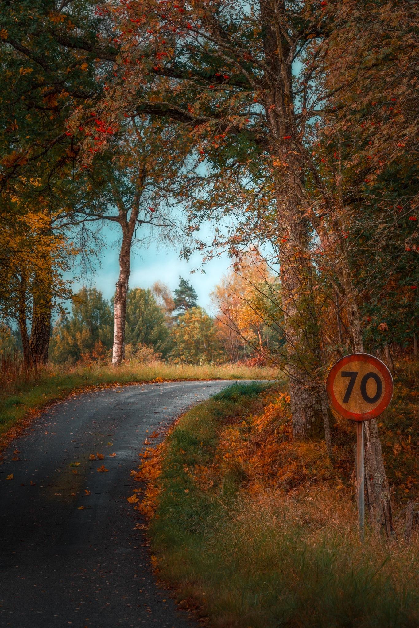 The speed of autumn by Göran Ebenhart