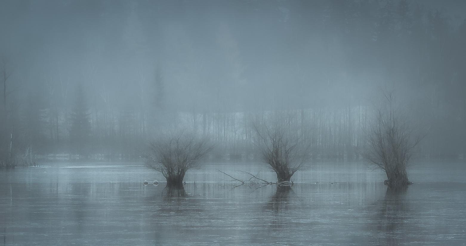 Frozen by Göran Ebenhart