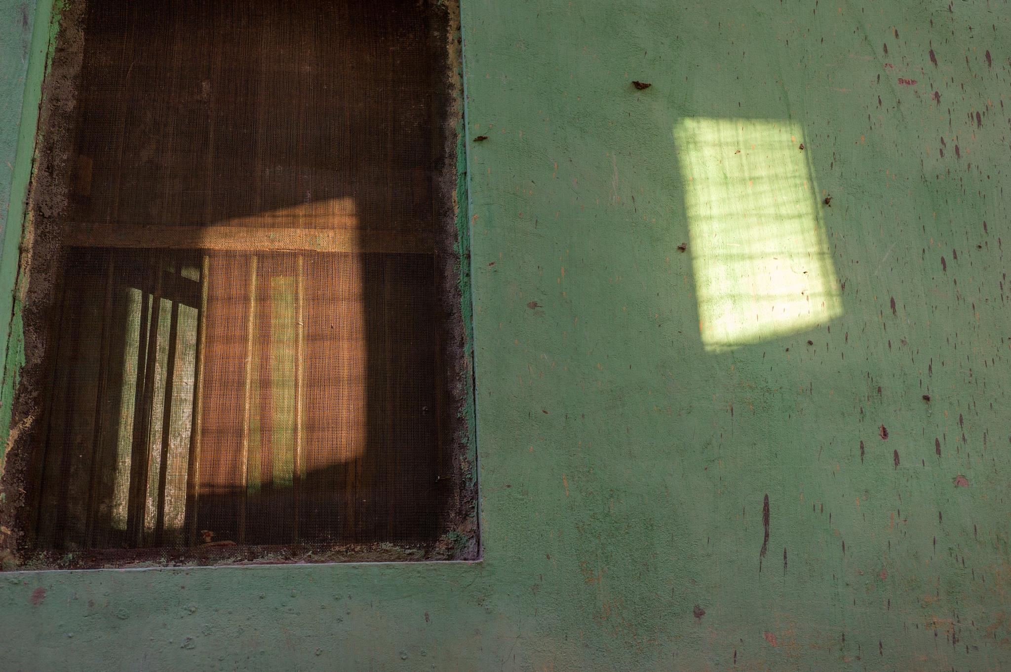 Rishikesh, India by NigelMeaby