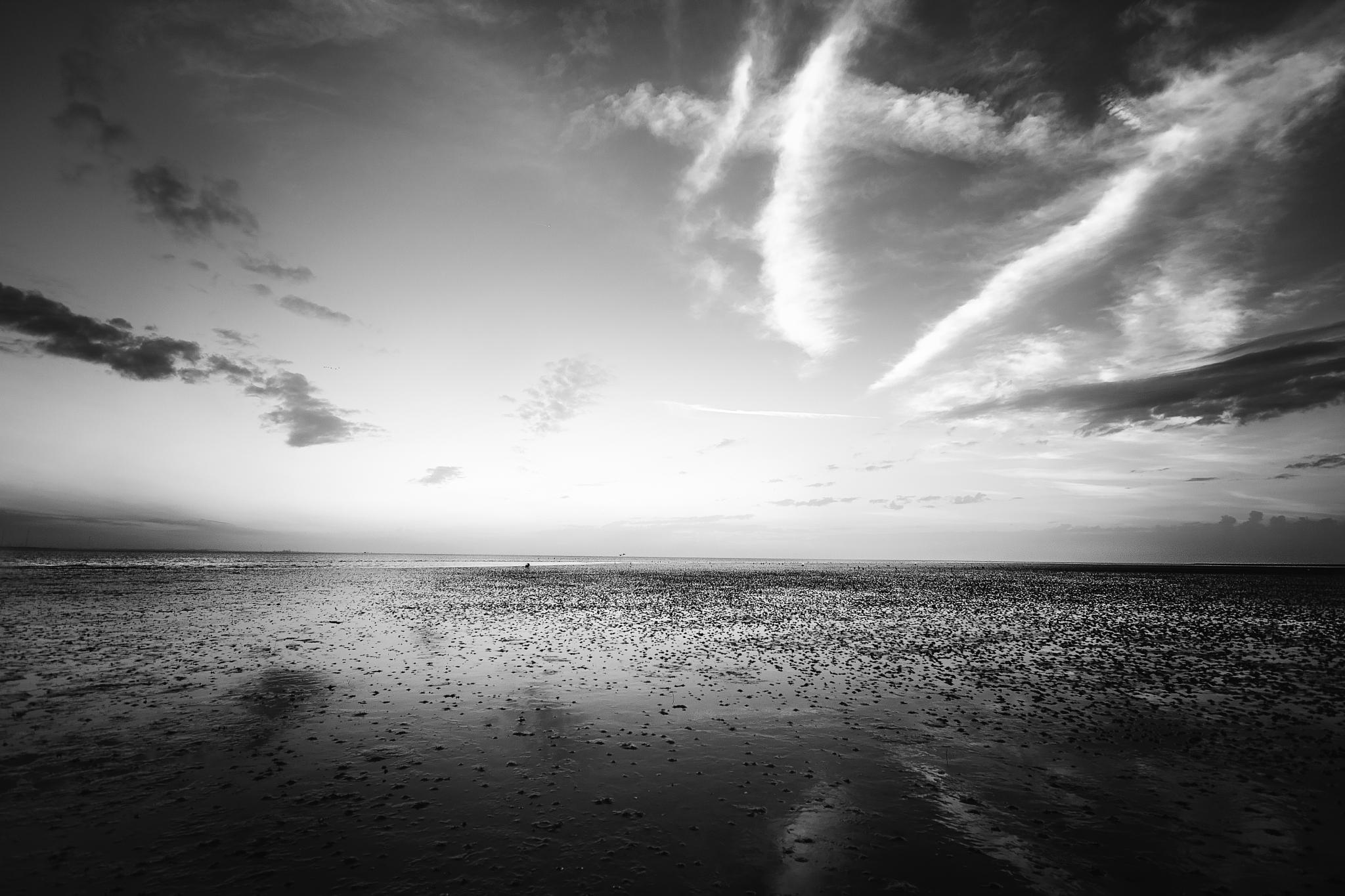 Northsea by Taberia