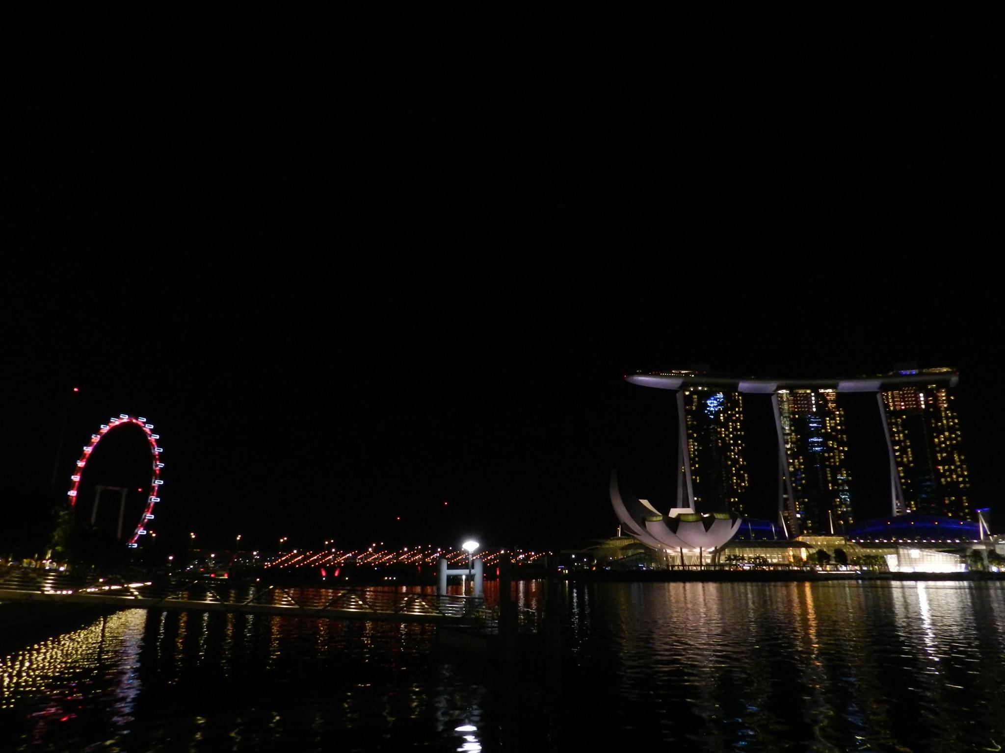 Singapore by night by Shrenik Dodhia