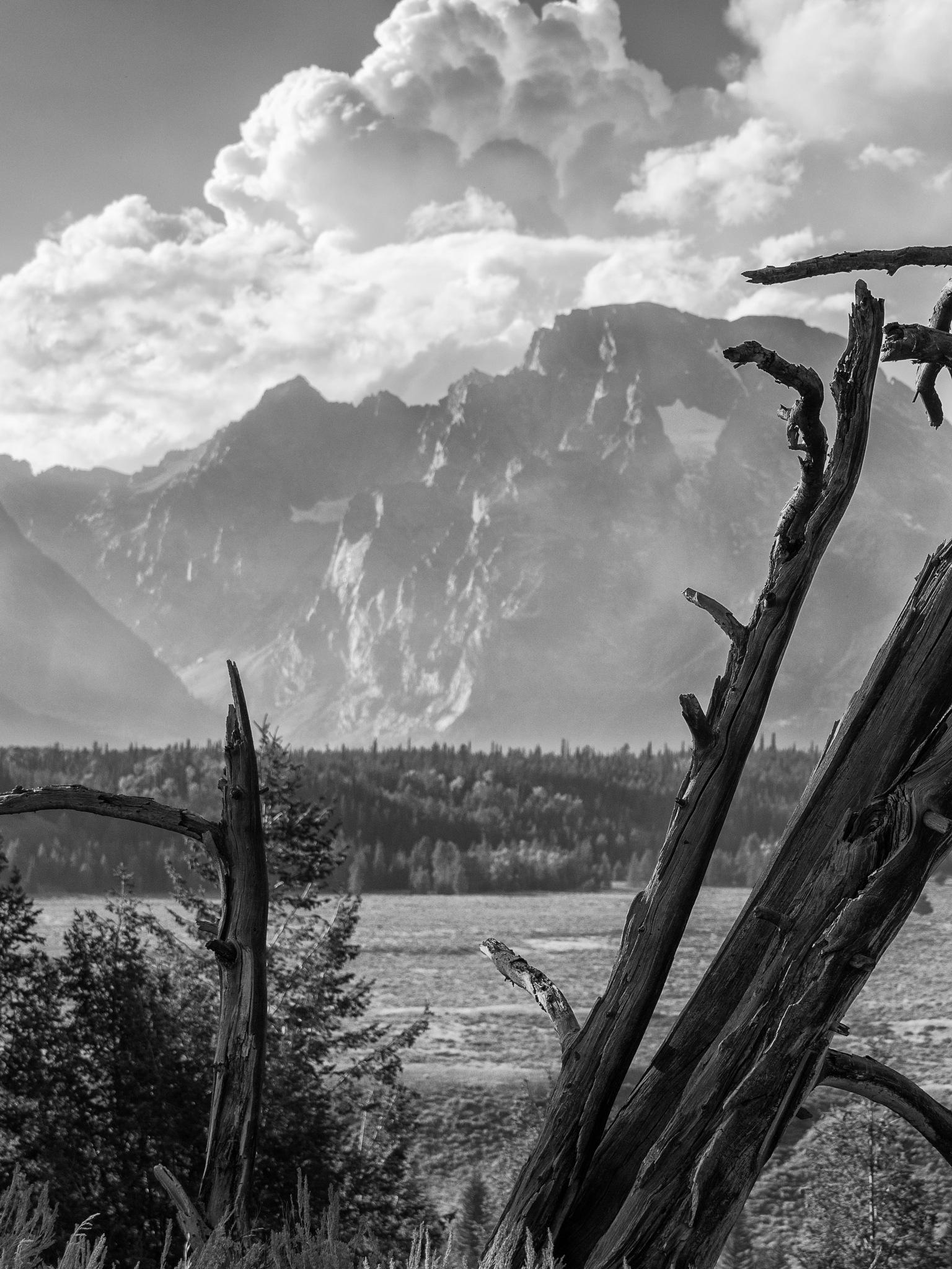 Snake River by DivingMeCrazy