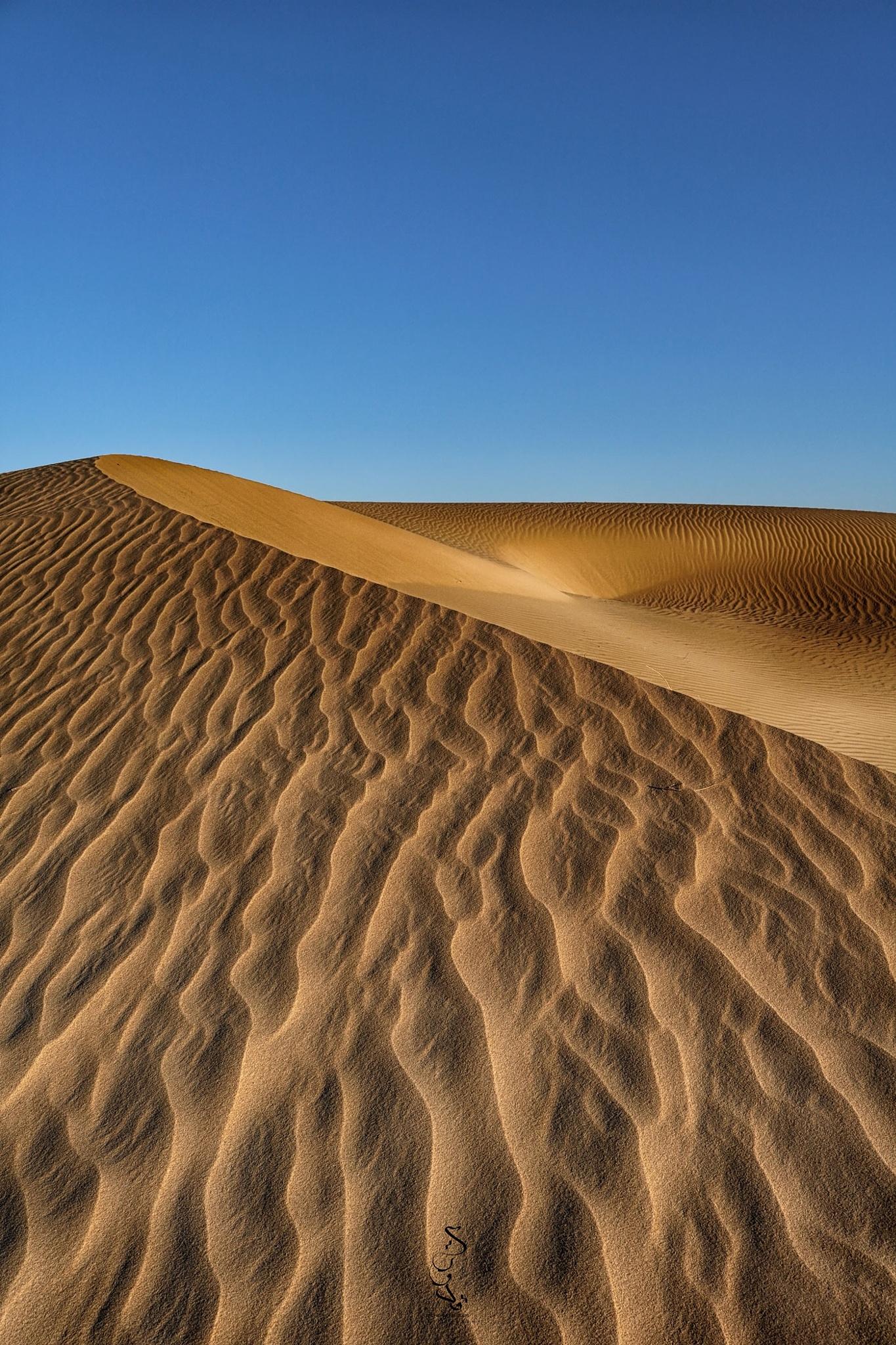 Golden Sands by Mohamed Kaddouri