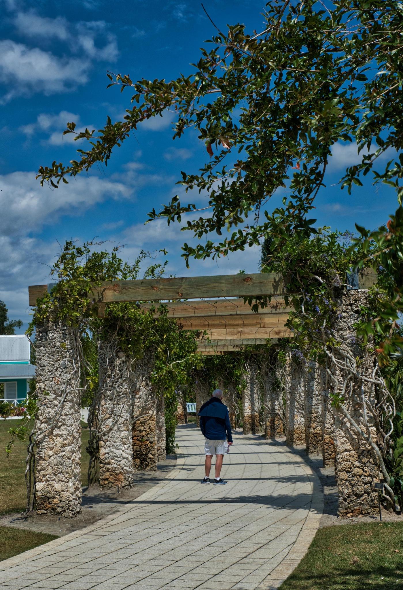 walkway by Dan McGovern