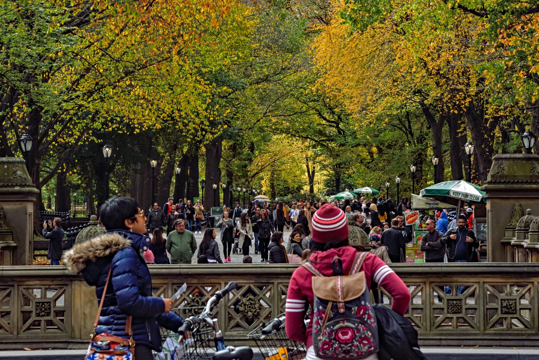 central park, the Mall in fall by Dan McGovern