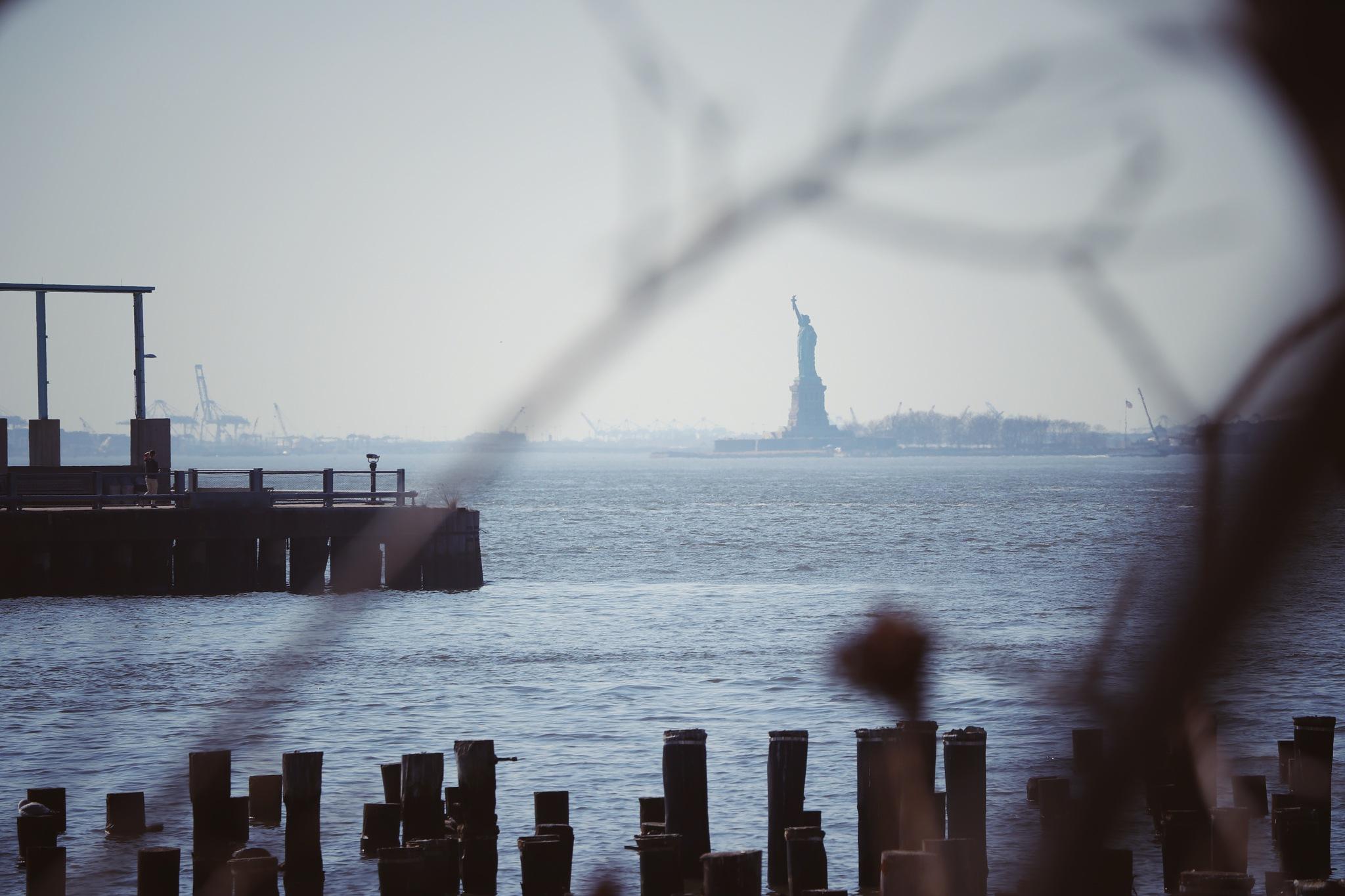 Distant Liberty by Richard Lamb