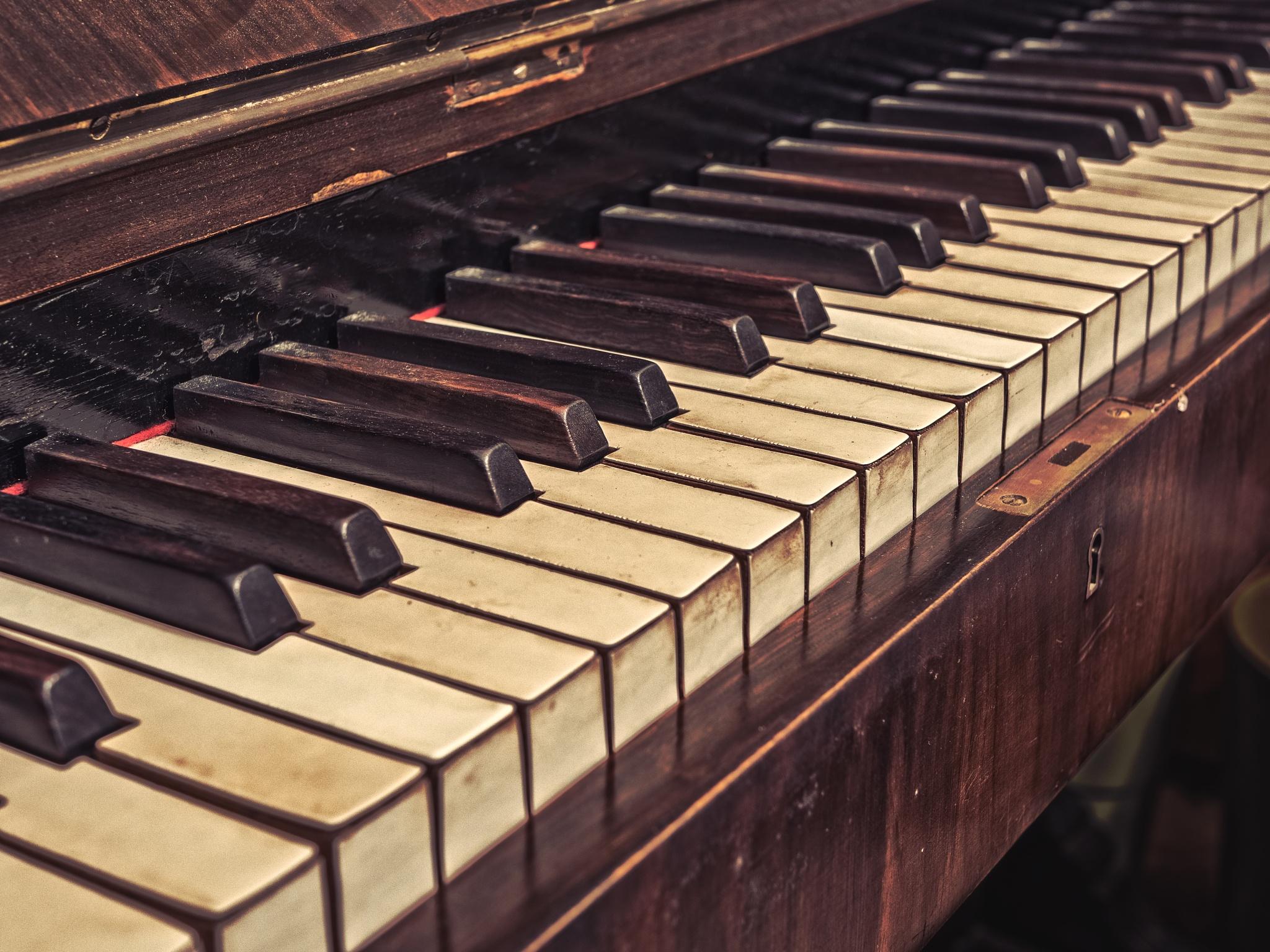 Abandoned Piano  by Joshua Willson