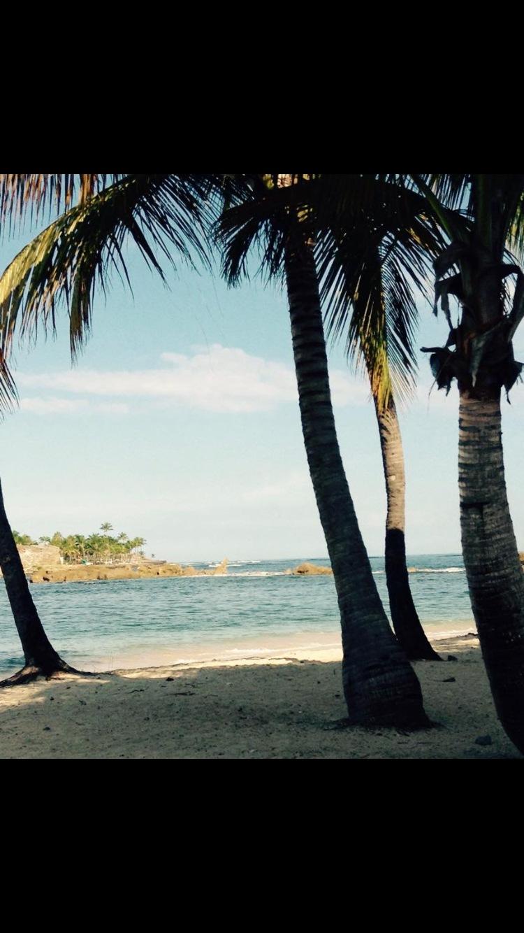 Mi Puerto Rico by MsPictureTime