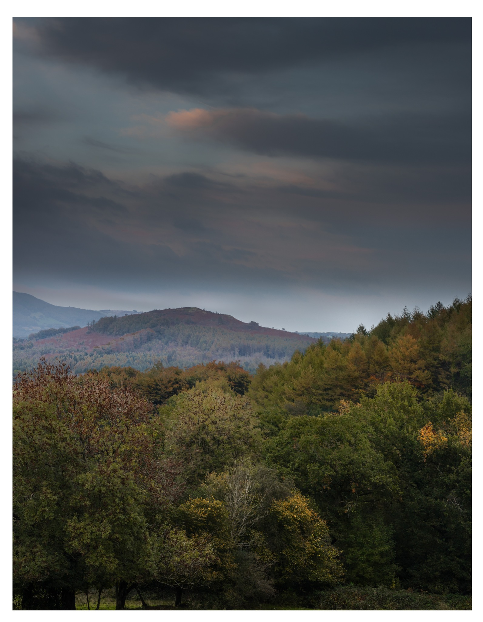 Rudry Mountain by Martin Roberts