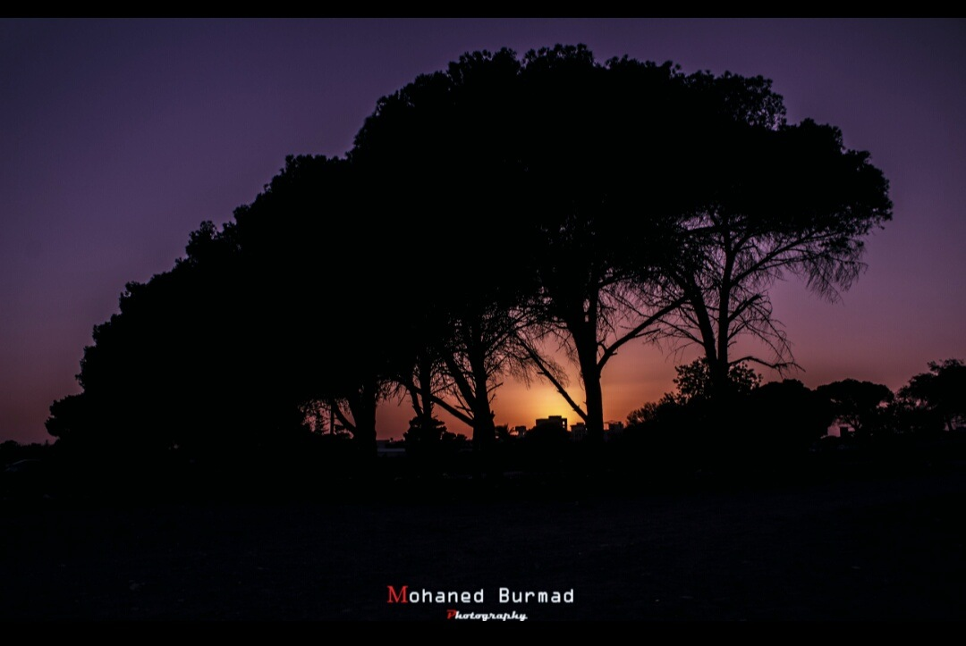 Untitled by Muhanned Burmad