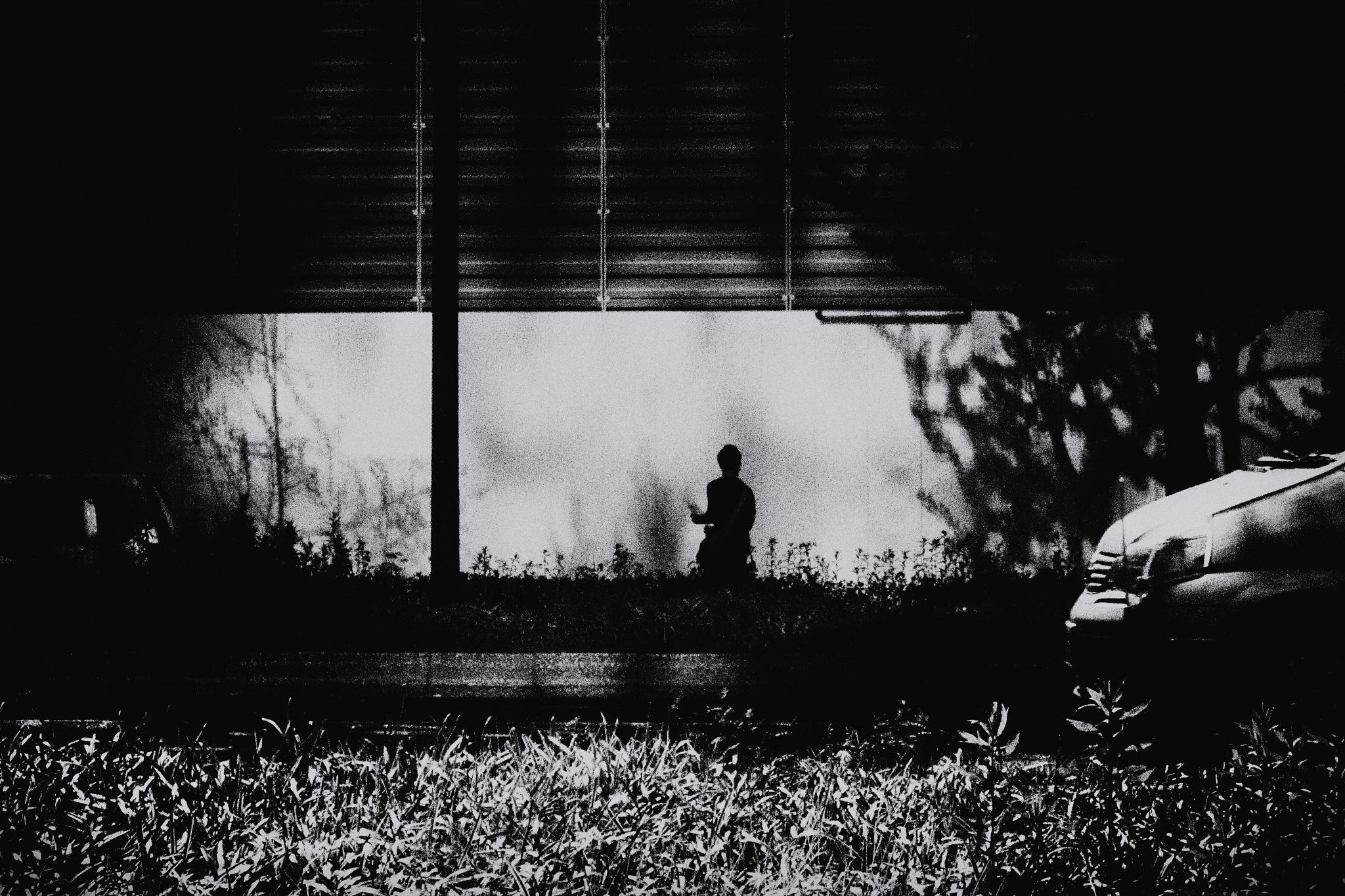 One Day History 188 by Hitoshi Matsumoto