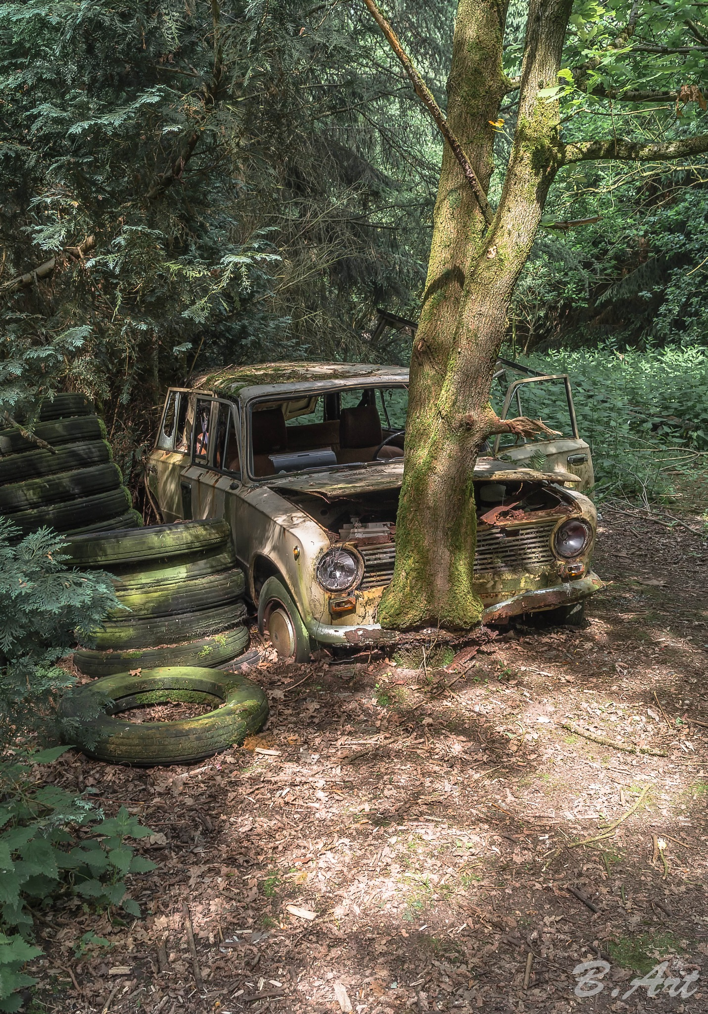 lost car by Bart van Reeth