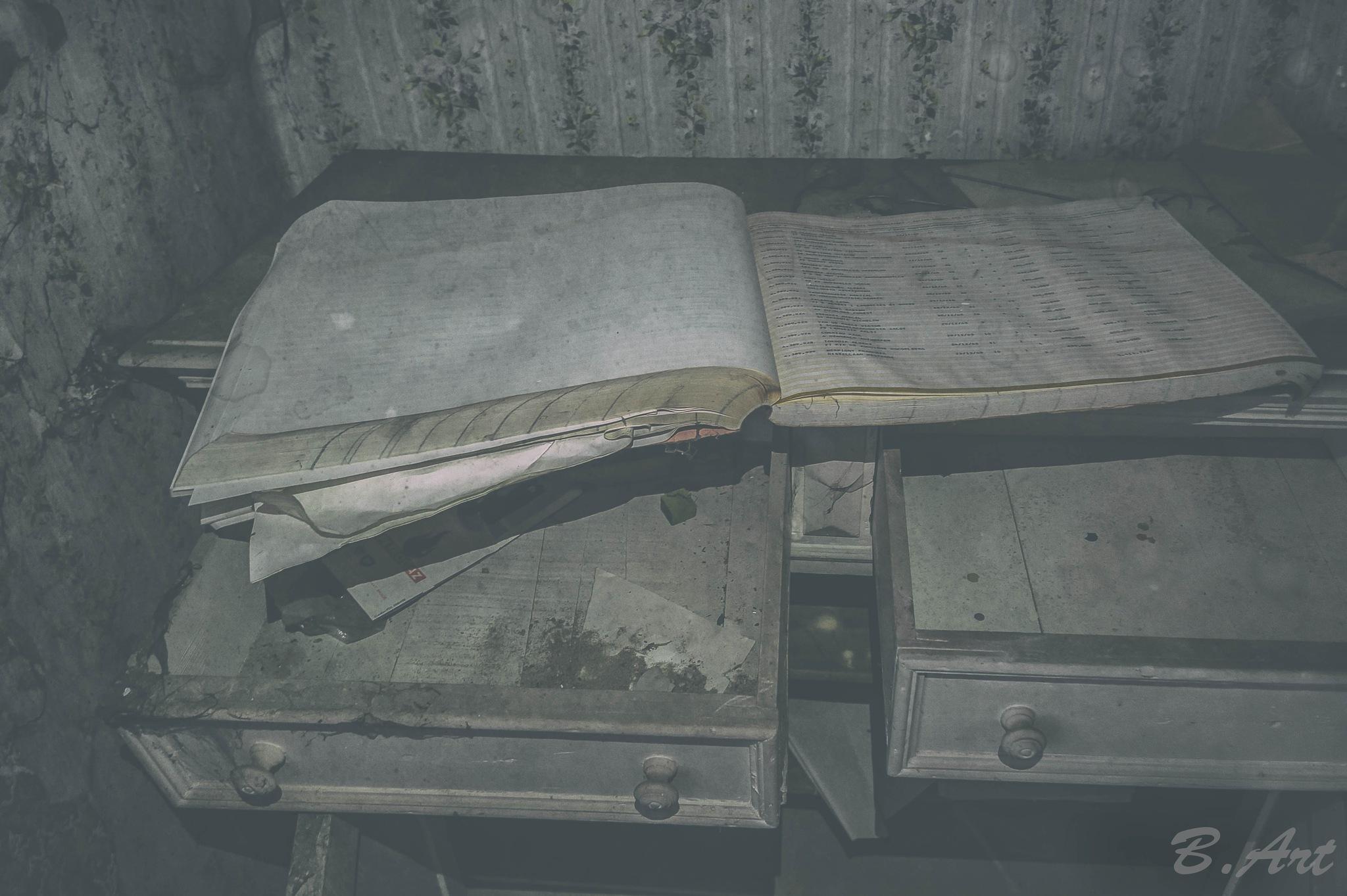 book of... ?  by Bart van Reeth