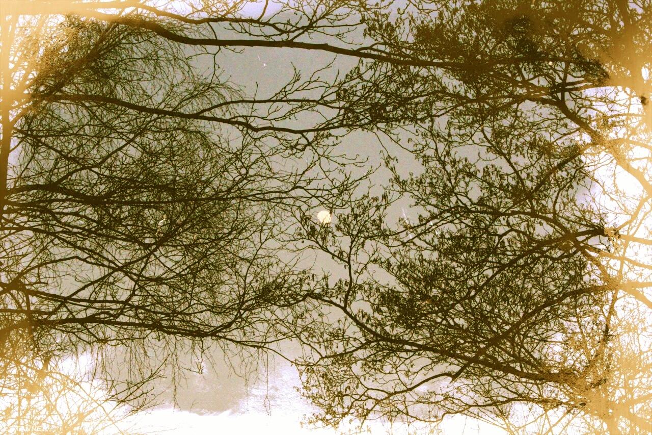 Misty Sun Over Fyn. by anthonymartin