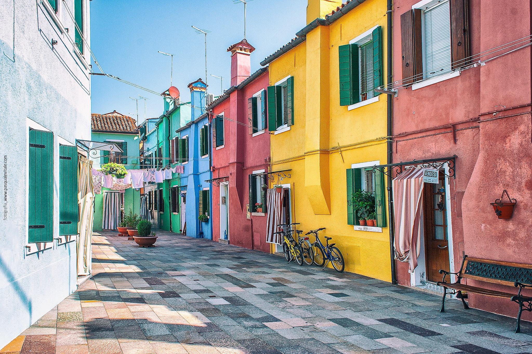 I colori di Burano by Pasquale Vitale