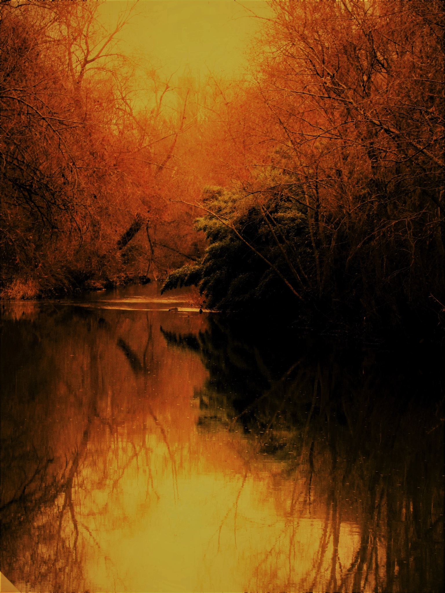 ma rivière 2 by vigilicatherine