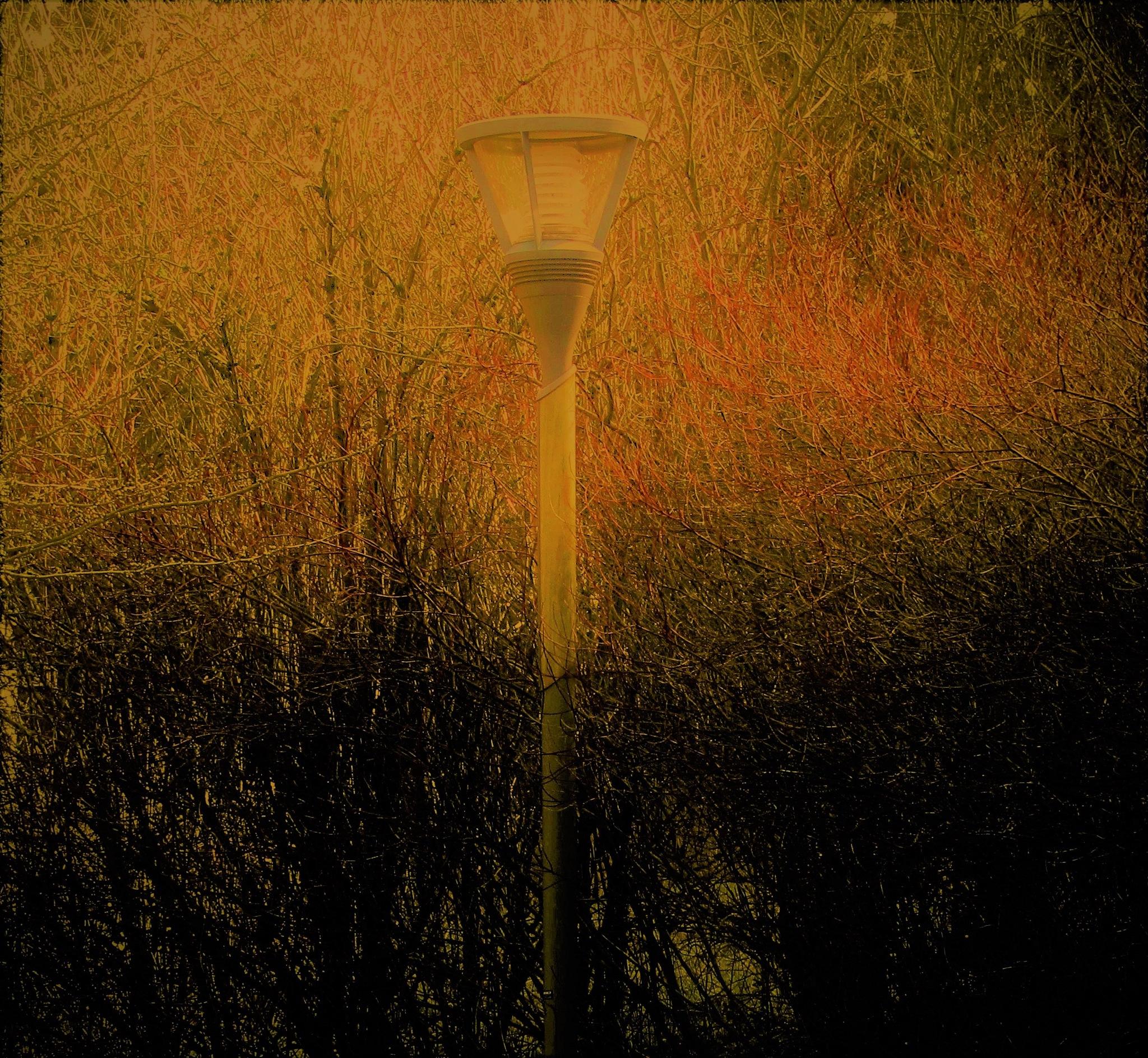 luminaire by vigilicatherine
