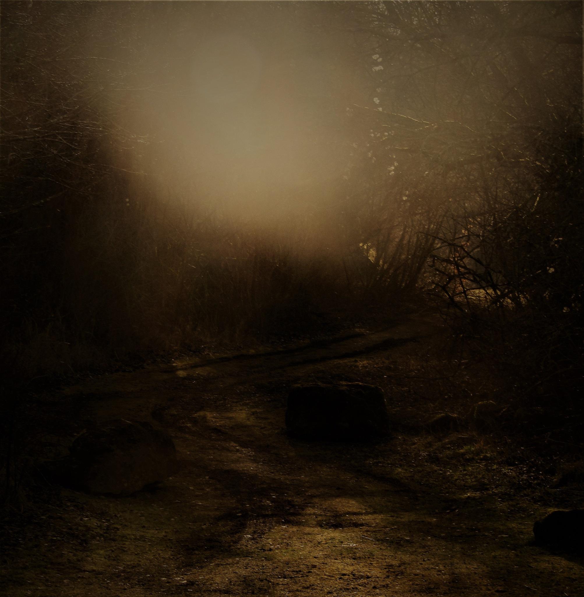 ombre et lumière by vigilicatherine