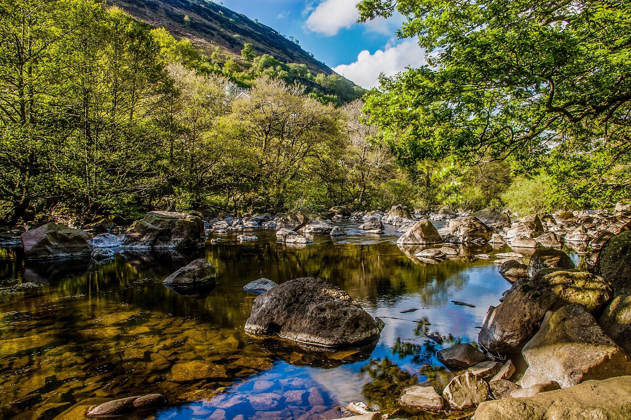 River Elan by Richard Poole