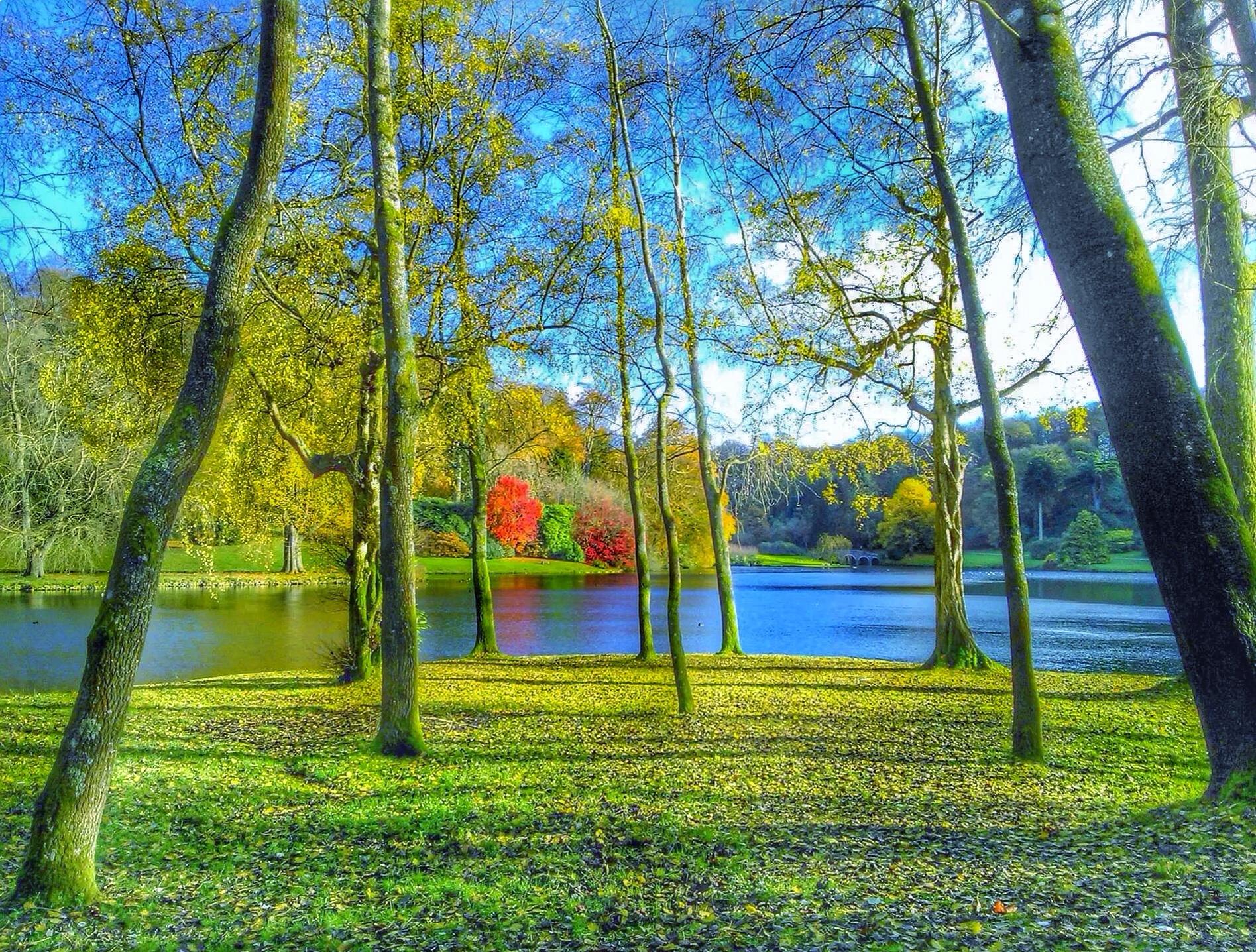 Stourhead Gardens Wiltshire  by Susan Prange